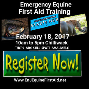 Spots left Emergency and Safety Equine First Aid