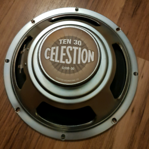 """Celestion 10"""" out of Princeton Reverb '68 reissue"""