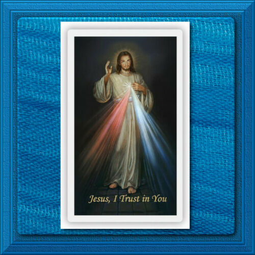 Divine Mercy of Jesus Chaplet LAMINATED Holy Prayer Card Wallet Size Catholic