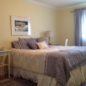 Professionals required for a Renovated furnished room free wifi