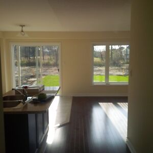 Detached 3 bedroom house 1 KM from 401/HWY 8 . Cambridge Kitchener Area image 6