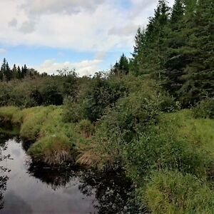 Acreage for sale in Knightville, close to Sussex and Petitcodiac