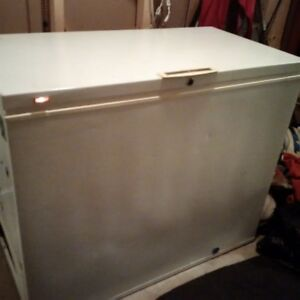 Freezer in Fredericton - Need Gone