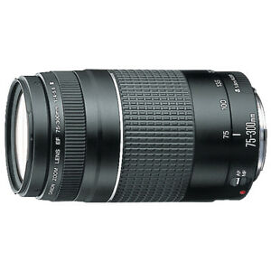 Canon Telephoto Zoom Lens
