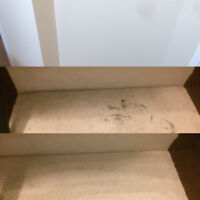 Home Stars Carpet Cleaning Exclusive Home Services