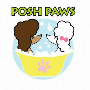 Posh paws dog grooming