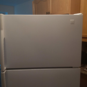 MAYTAG 20.7 CU. FT. CAPACITY FRIDGE / FREEZER (MODEL MTB2156GE)