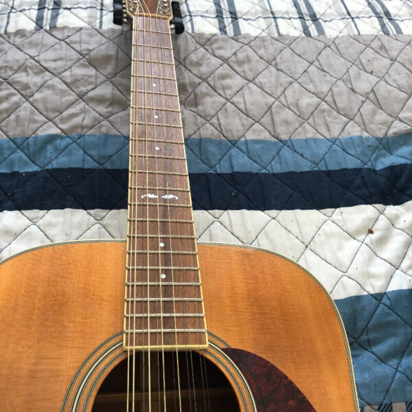 Cort 12 string acoustic guitar with case