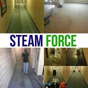 Deep Steam Cleaning. 3 areas + sofa $99 London Ontario image 1