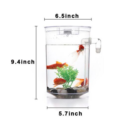 Creative Ecology Mini LED Fish Tank Luminous Glass Tank Aquarium Fish Tank 2