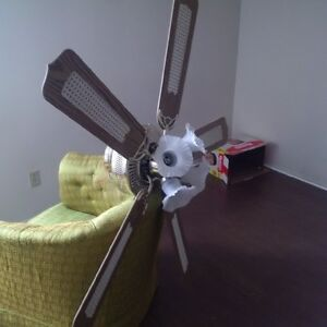 Large High End Ceiling Fan