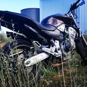 Swap Honda hornet 919 Paralowie Salisbury Area Preview
