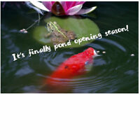 Total Pond Services