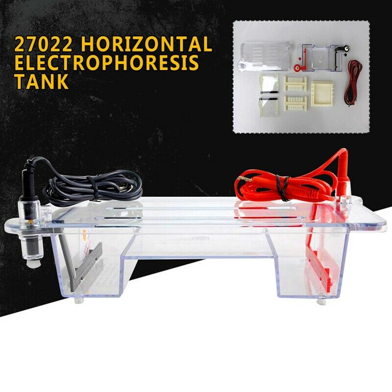 27022 Horizontal Electrophoresis Tank Experimental Tteaching Equipment Newest