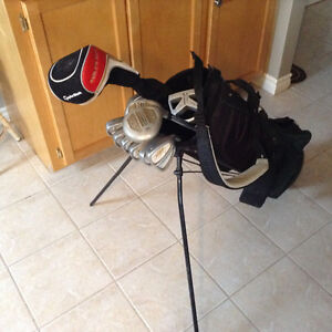 Full set of clubs and stand bag