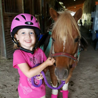 Pony rides for your event!