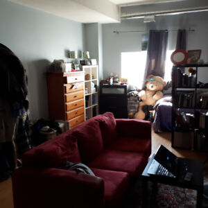 Bachelor apartment  - Downtown St Catharines