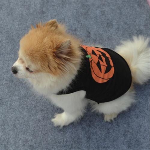 Pet Dog Halloween Pumpkin Outfit Costume Puppy Coat Sweater Jumper Cute Clothes 5