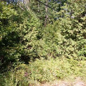 Vacant Building Lot In Deer Bay Reach Lot 30 Plan 24