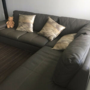Gray couch brought from Structube