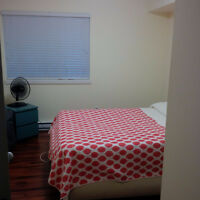 one furnished bedroom (Lakewood & Pandora)