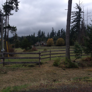 Lovely Equestrian Boarding Facility