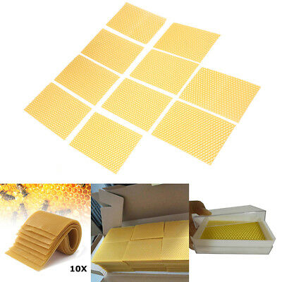10x Honeycomb Wax Frames Beekeeping Foundation Honey Bee Hive Tool Garden Lots