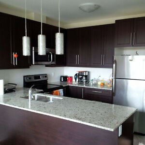 2 bdr, 2 parking condo in GreenLife building Milton