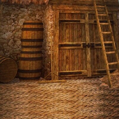 Vintage Medieval Photographic Farmyard Backdrop 8x8 Background Studio Prop Photo](Medieval Backdrops)