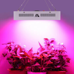 (wholesale) Plant grow LED  Llight 600W,1500W,2400W for cannabis