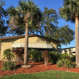 55+ Park Manufactured Home for Sale