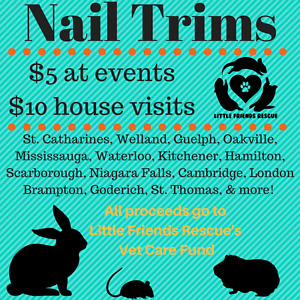 Nail trimming services