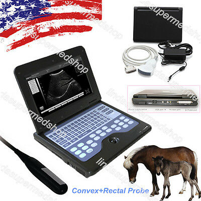 Digital Cms600p2 Vet Veterinary Portable Laptop B-ultra Sound Scanner2 Probe Us
