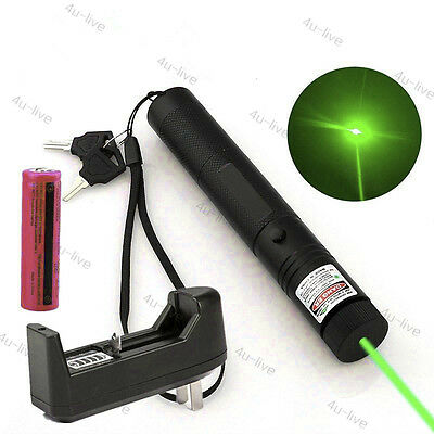 1mw 303 Green Pointer Laser Pen Adjustable Focus 532nm Burning + Battery Charger