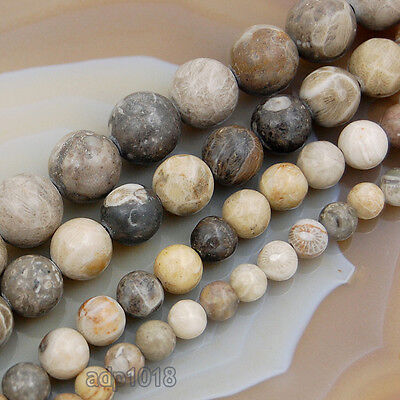 Natural Coral Fossil Gemstones Round Spacer Beads 15