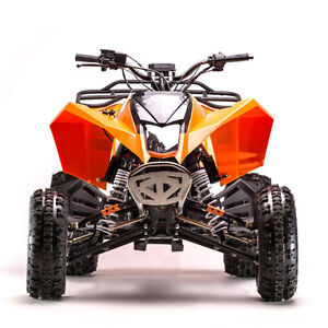 New GIO 250cc Liquid Cool 2x4 ATV 4-stroke on Super Sale NOW!
