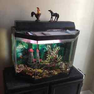 Fish tank with 2 fishes,accessories,black cabinet stand, all $80