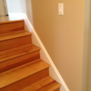 METICULOUS RELIABLE EXPERIENCE PAINTER