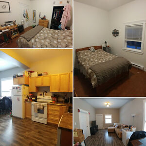 Roommate wanted to share 2 bdrm apartment centre city - FEB 1