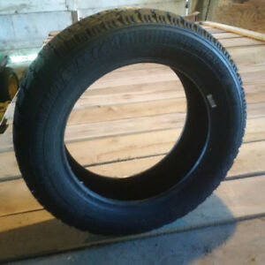 Goodyear Nordic 195 55 R 15 all weather tires
