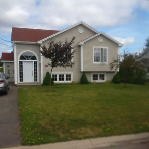 Lower Unit - Duplex - Nice and Bright - Dieppe - Available Nov.
