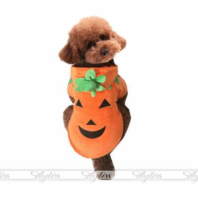 Halloween Haustier Kleidung Hund Kostüm Cosplay Kürbis Outfit Apparel (Kostüm Haustier)