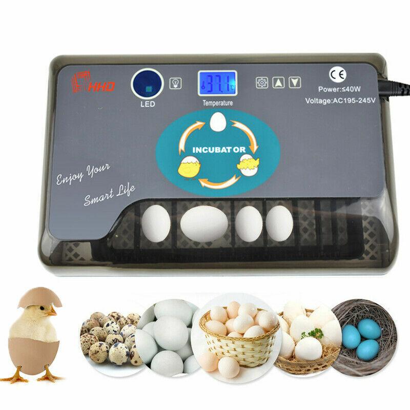 12 Eggs Incubator Automatic Digital Poultry Hatcher Egg LED Turning Lamp US