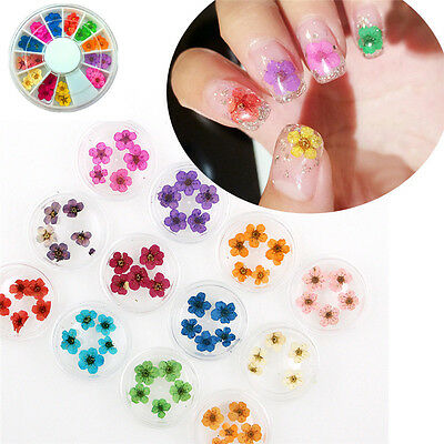 12 Colors Real Dried Flower UV Gel Nail Art 3D Acrylic Decor Manicure Wheel DIY for sale  Shipping to Canada
