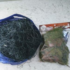 Black & Green Moss for Crafts/Indoor Gardening