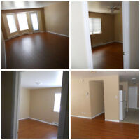 Awesome find! Adult unit near UdeM, close to amenities, has deck