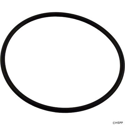 (Pentair SUPERFLO Swimming Pool Pump Lid Cover Replacement O-Ring Part 357255)