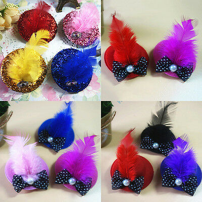 1x Caps Princess Style Design Dog Hair Pet Grooming Hair Clips Hat Clip