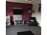 Amazing flatshare! Your own flat for a month then only sharing every other weekend (bills incl)