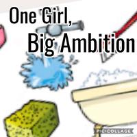 One Girl, Big Ambition -Residental Cleaner & Organizer-